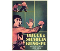 BRUCE AND SHAOLIN KUNG FU (Брюс и кунг фу Шаолиня)
