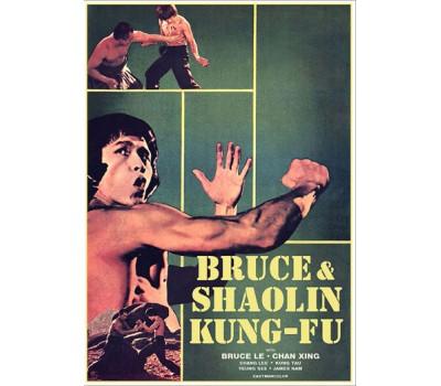 BRUCE AND SHAOLIN KUNG FU (Брюс и кунг фу Шаолиня)